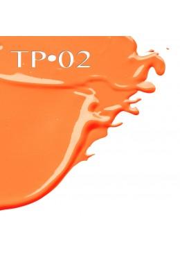 TRANSFORMADOR VISION CREAM COVER 2.5ML - TP02 - DANESSA MYRICKS